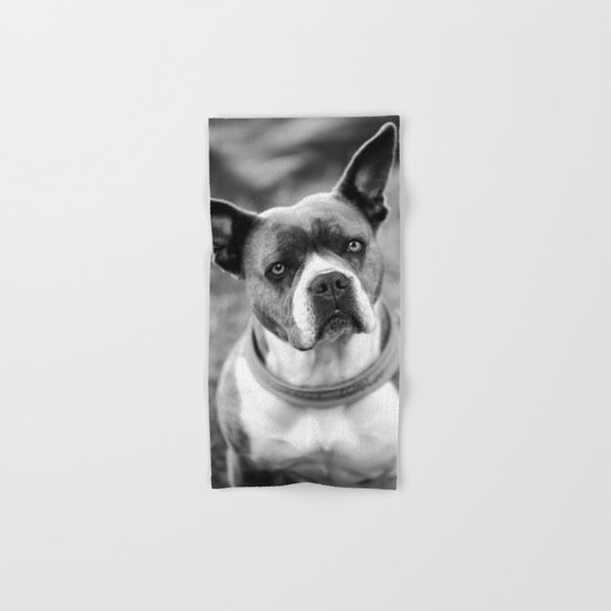 Dogs Hand & Bath Towel