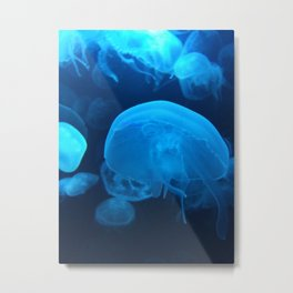 Blue Jellyfish Metal Print