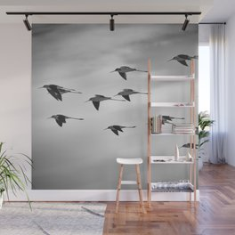 The Black Winged Stilt. Fliying.... Bw Wall Mural