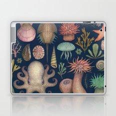 Aequoreus Vita Laptop & iPad Skin