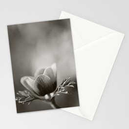 Anemone No. 1 Stationery Cards