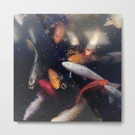 Colorful Koi Fish Metal Print