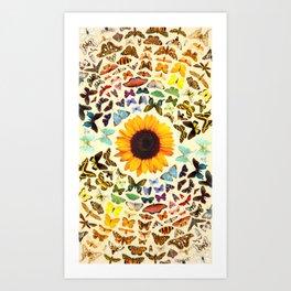 Sunflower and Butterflies Art Print