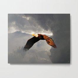 Above the Storm Metal Print
