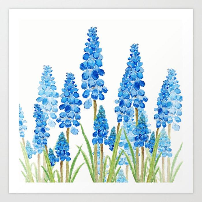 blue grape  hyacinth forest Art Print