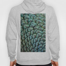 Beautiful Elegant Peacock Feathers Hoody