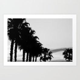 Palm tree Line up! Art Print