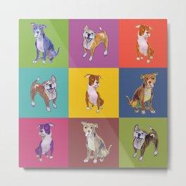 Colorful Pitbulls Metal Print