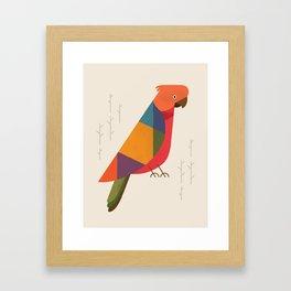 Australian King Parrot Framed Art Print