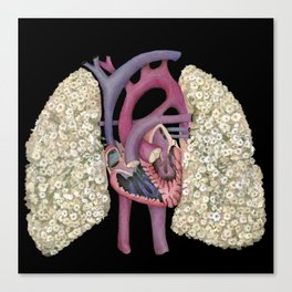 Fetal Heart with Baby's Breath Lungs Canvas Print