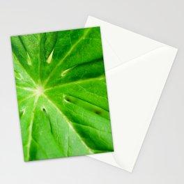 Peaceful Greenery Podophyllum Leaf Botanical / Nature Photograph Stationery Cards