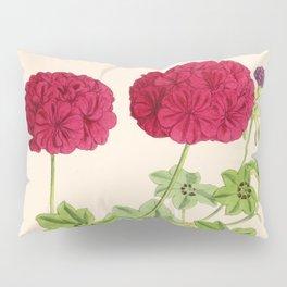 Ivy Leaved Pelargonium Pillow Sham