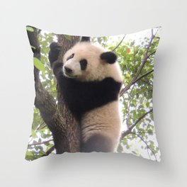 Chongqing Baby Giant Panda | Bébé Panda géant Throw Pillow