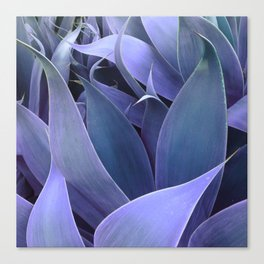 Abstract Leaves Periwinkle Teal Canvas Print