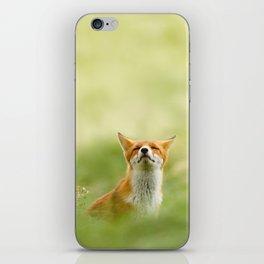 The Mindful Fox iPhone Skin