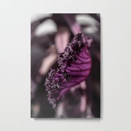 Abstract Purple Leaf in Morning Light Metal Print