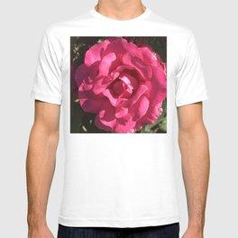 Single Romantic Red Rose Breathtaking Close-Up T-shirt