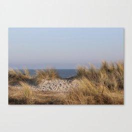Wild Landscapes at the coast 8 Canvas Print