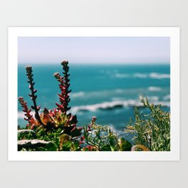 Seaside garden Art Print