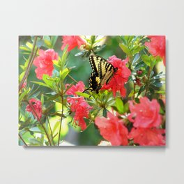 BUTTERFLY AND AZALEAS Metal Print