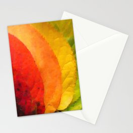 Collection beautiful colorful autumn leaves Stationery Cards