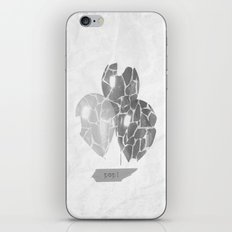 POP! iPhone & iPod Skin
