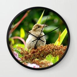 Little Sparrow Wall Clock