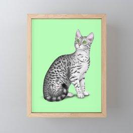 Egyptian Mau (Green Background) Framed Mini Art Print