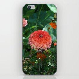 Flowers in Juicy Citrus Colors iPhone Skin