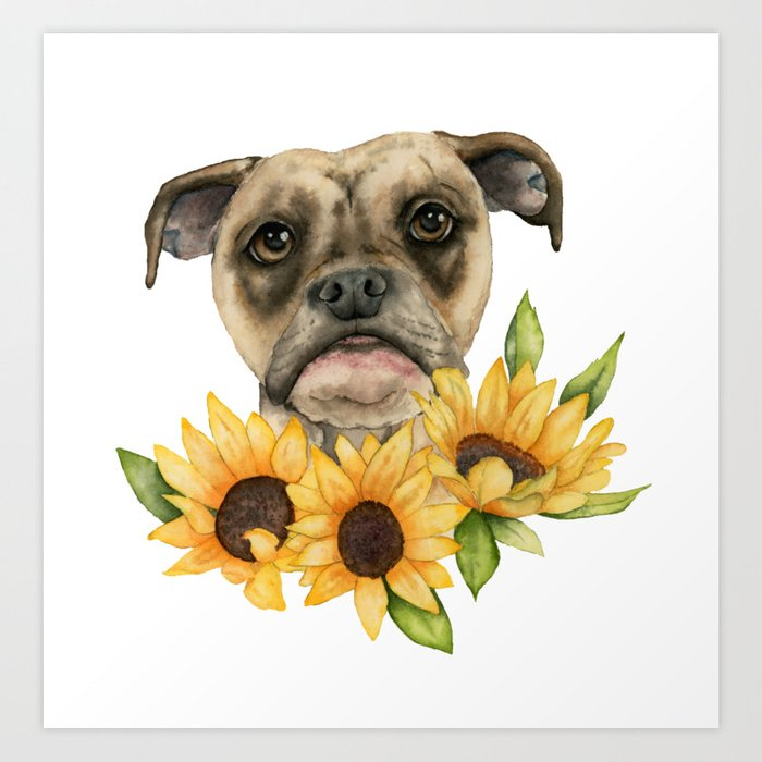 Cheerful | Bulldog Mix with Sunflowers Watercolor Painting Art Print