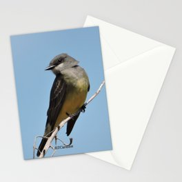 A Cassin's Kingbird Scopes the Skies for Flies Stationery Cards