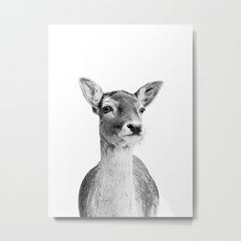 Deer Photo | Black and White Metal Print
