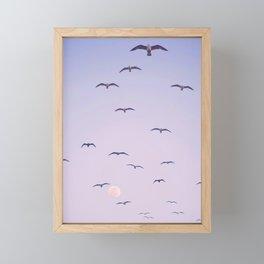 Seagulls & Moon by Murray Bolesta Framed Mini Art Print