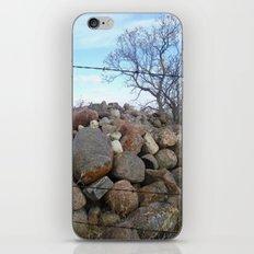 Tree and Rocks iPhone & iPod Skin