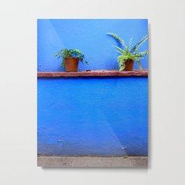 Standing sentry at La Casa Azul Metal Print