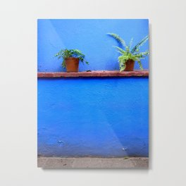 Standing sentry at La Casa Azul Metal Print