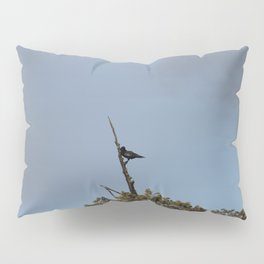 Perched Before the Storm Pillow Sham