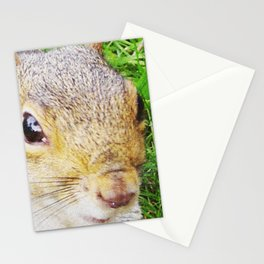 The many faces of Squirrel 5 Stationery Cards