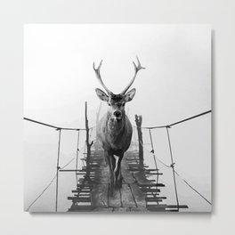 Cruiser Falls Metal Print