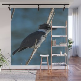 Male Belted Kingfisher Wall Mural