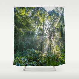 Sun Rays in a Forest Shower Curtain