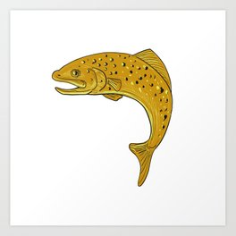 Brown Trout Jumping Drawing Art Print