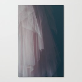 Dainty Pink Tulle Canvas Print