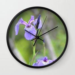 Wild Iris - Alaska Wall Clock