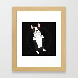 Adorable Begging Boston Framed Art Print