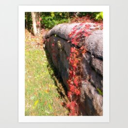 Stonewall in Color Art Print