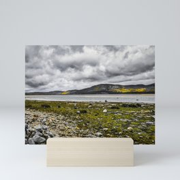Loch Fleet, Scotland Mini Art Print