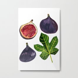 Figs Fruity Botanical Gouache Painting Metal Print