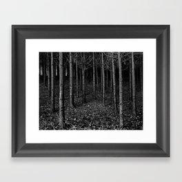 Armee of Trees Framed Art Print