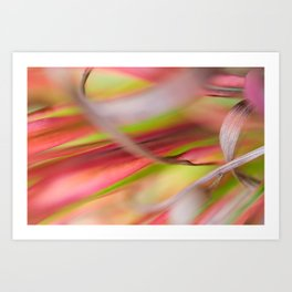 Japanese grass Fine Art Close-up Photography - Colorful Botanical Print - Textures in my Garden Art Print
